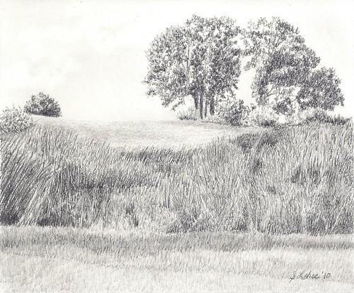 Wetland Landscape, graphite