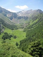 Comboé (geremia.momo) Tags: valle monte valledaosta vallone prati boschi comboé incontaminato emilius