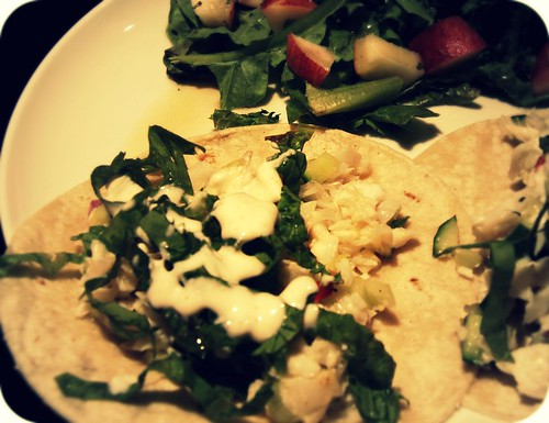 halibut fish tacos closeup