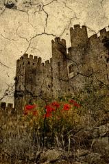 Obidos Castle (