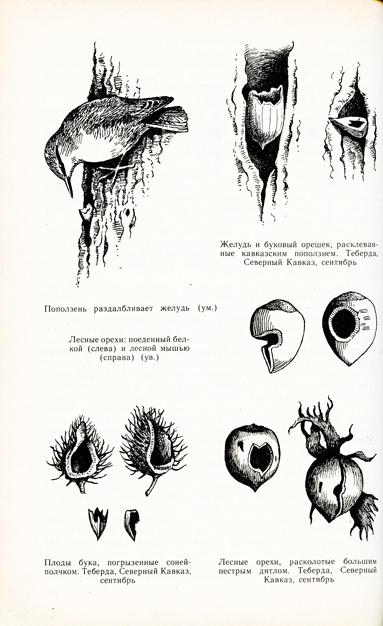 sputnik_page_002