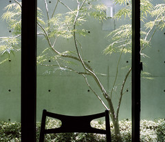 Tainan_20100704_01 (Lordcolus) Tags: color tree mamiya film window restaurant cafe chair flickr meetup kodak snapshot taiwan negative tainan n80   400vc mamiya7ii epsongtx900