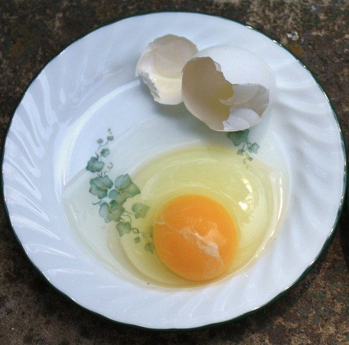 White Store-Bought Egg
