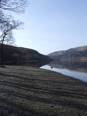 Early morning shadows at Loch Lubnaig (morriganthecelt) Tags: trees water scotland shadows shore loch scotlandslandscapes