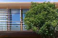 024-Fincube-Florian-Berger (Florian Berger) Tags: italien design living architektur aussicht sdtirol bozen einrichtung suedtirol wohnen holzhaus bauwerke holzbau moderneswohnen nachhaltig werneraisslinger kreatif fincube florianberger mobileswohnen