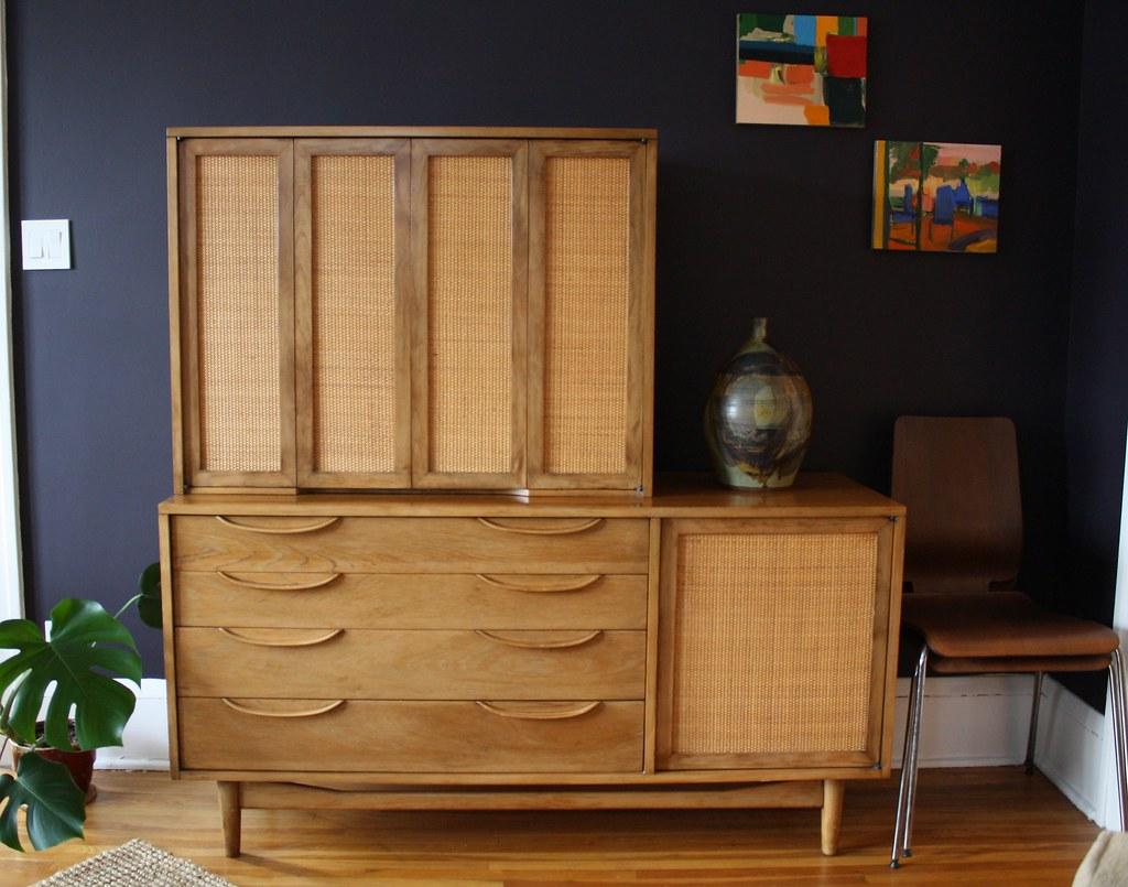 Living Room Remodel storage