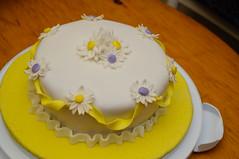 20100607-DSC_4673 (Todd Kinney) Tags: cakes cake cakeclass fondantcake