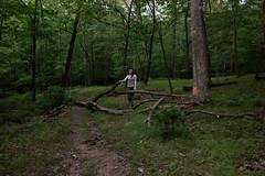 ;; (Bar Zipora) Tags: trees light girl woods pretty bodylanguage hike teen