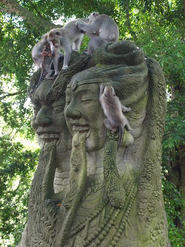 Monkey Forest (21)