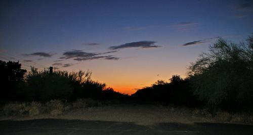 Phoenix path