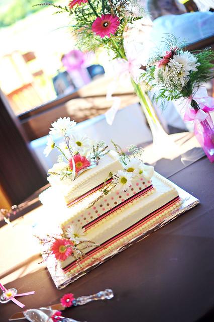 c & l wedding 238