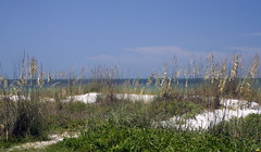 Beach 027 (mcbooney) Tags: beach birds boats dunes seaoats bikinibeach