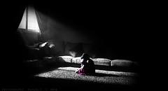 Alone in the dark  _         ...{Explore} (Fahad-Z) Tags: canon dark alone f 1855mm fahad    450d