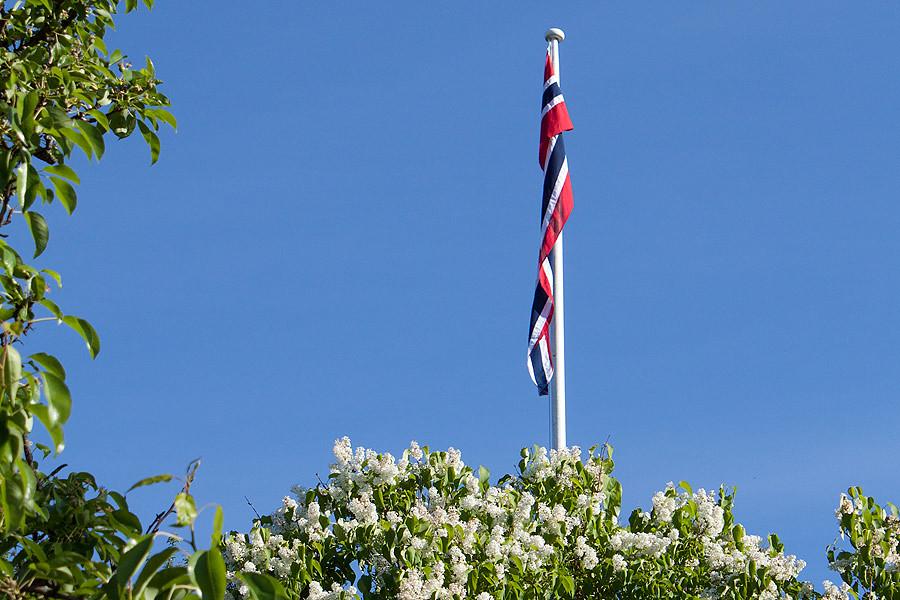 flag-utro