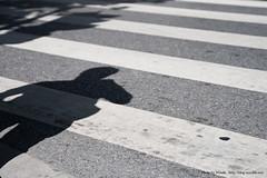 Zebra crossing shade (Woods | Damien) Tags: china road street urban asia flickr shanghai stripes ombre route shade jingan asie   rue meet chine bandes zebracrossing shanghaiflickrmeet passagepiton  wwpw worldwidephotowalk2010