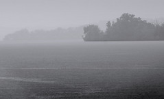Rain on Water (Cliff Michaels) Tags: trees mist lake storm water rain photoshop d50 nikon tennessee easttennessee roanecounty capturenx