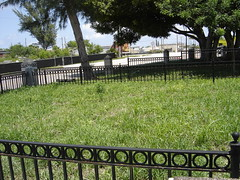 Mass Grave 028 (Skeeter451) Tags: west beach grave wpb site hurricane palm mass 1928 massgrave