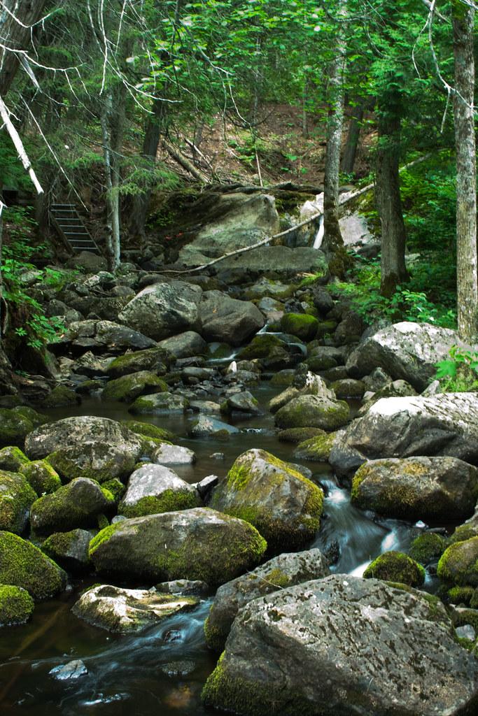 Paisible cours d'eau
