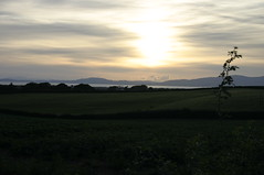 Sunset across the Galloway Coast. (Marra Man) Tags: cumbria jericho criffel solwayfirth solwayplain gallowaycoast allerdaledistrict