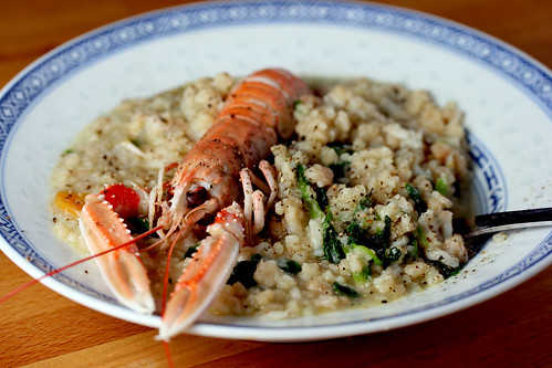 Langoustine with fregula