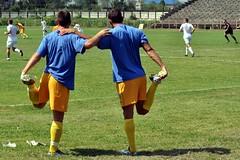 Soccer: Teamwork ©2010 Marius Butuc