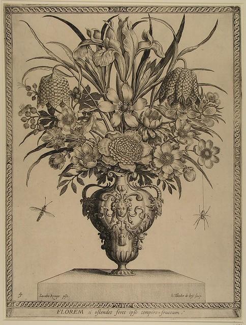 Florem si ostendet feret ipso tempore fructum (de Bry)