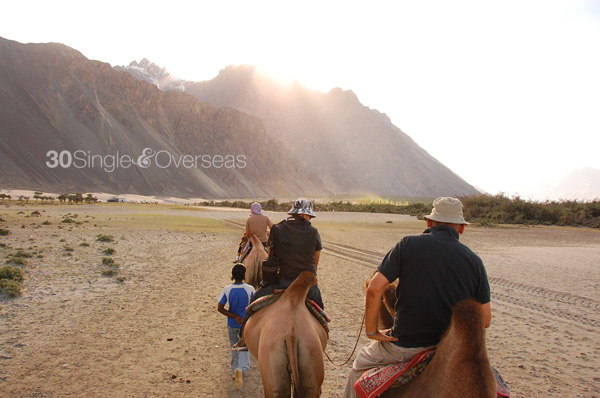 Camel ride, Nubra Valley