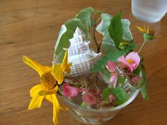 波輝カフェ 七浦 海水浴場の画像 28