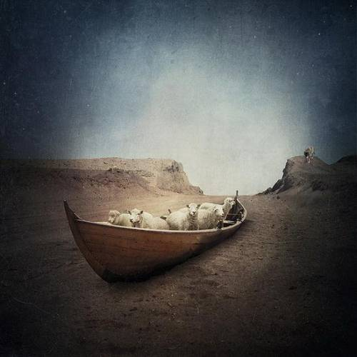 Българският Ноев ковчег
