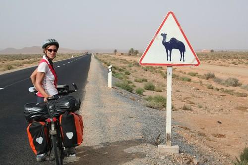 Amaya on the road