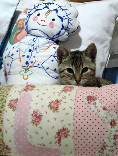 Nina se esconde