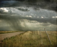 passing over (jssteak) Tags: road sky rain canon fence landscape colorado afternoon grasses thunderstorm dirtroad plains clounds grasslands tumbleweed textured stromy barbwirefence pawneenationalgrasslands t1i fencefriday fencedfriday