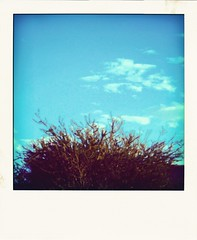 Vanderlyle (thewaytoblue) Tags: clouds polaroid bluesky thepast touchthesky
