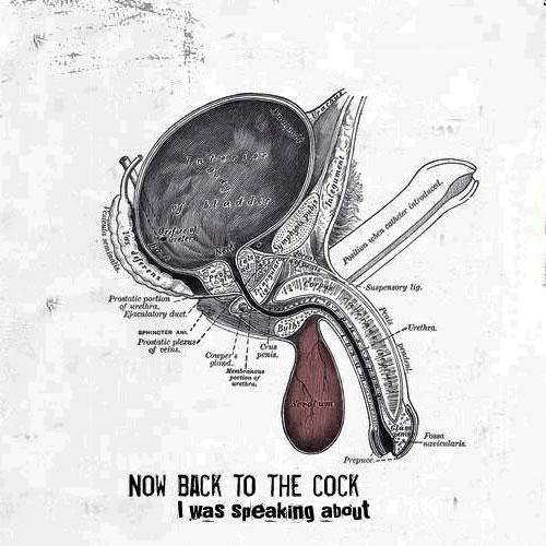 www_cock
