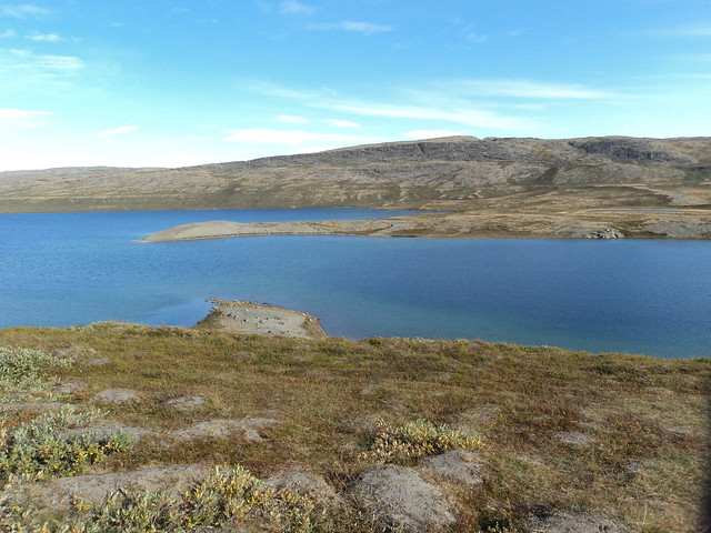 A Summer View of Greenland
