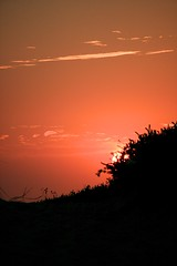 Sunset #1 (thisismyscope) Tags: sunset plants beach portugal sand scope stones alentejo ferraz vactions brunoramosferraz thisismyscope