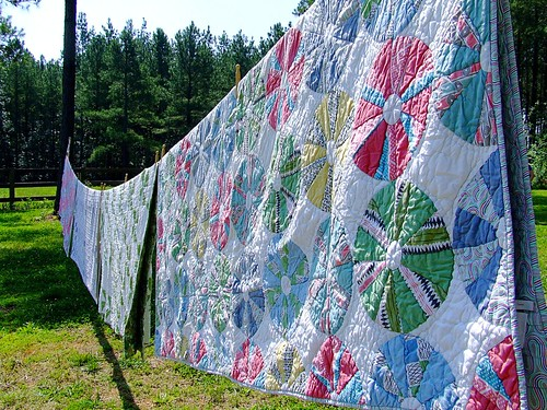 Sunshine Lavender Farm Quilts