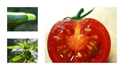 zucchini basil tomato