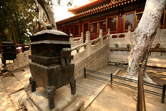 Imperial Gardens 31 (David OMalley) Tags: china city red beauty architecture capital chinese beijing palace forbidden empire imperial  forbiddencity dynasty emperor  grandeur  verbotenestadt citinterdite    verbodenstad cidadeproibida cittproibita yasakehir chineseempire    ipinagbabawalnalungsod cmthnhph