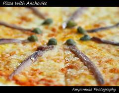 Pizza With Anchovies / พิซซ่าปลาแอนโชวี่