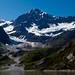 Receding Glacier, John Hopkins Inlet, Alaska