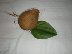 Indian Wedding Coconut