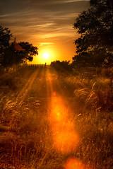 Sunset Gate (mapaolini) Tags: sunset gate portfolio hdr johnsoncity pictureframe