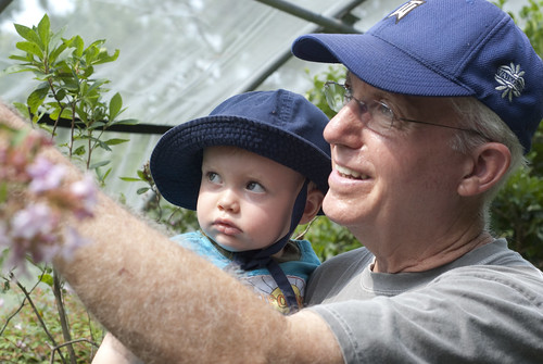 observing a butterfly with papa