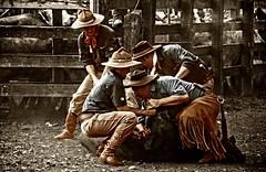 Dia de rodeio... (mauroheinrich) Tags: brasil nikon cavalos gauchos ctg riograndedosul pampa querencia tradicionalismo gaucho rodeio gaúcho tradição gaúchos gauchismo 18200vr ibirubá fotógrafosbrasileiros fotógrafosgaúchos ranchodostropeiros fotógrafosdosul