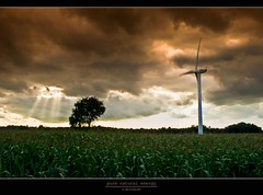 pure natural energy (D.Reichardt) Tags: sun tree nature windmill weather clouds germany landscape europe wind energie rays mize norddeutschland notherngermany flickraward