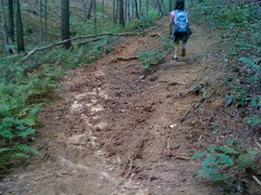 Moss Branch Ctor - beginning of singletrack