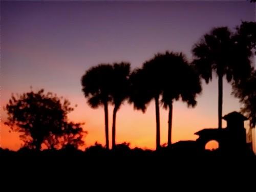 Florida-sunrise