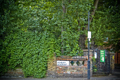 Highbury Quadrant (LunaticDesire) Tags: road street door city uk travel trees england urban plants holiday brick green london english tourism home sign wall architecture fence photography living nikon cityscape exterior britain pavement united great north royal ivy kingdo