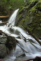 Benson Creek Falls (JsonConnelly) Tags: canada water creek forest waterfall stream bc slow fuzzy britishcolumbia nanaimo falls vancouverisland benson jasonconnellyphotography
